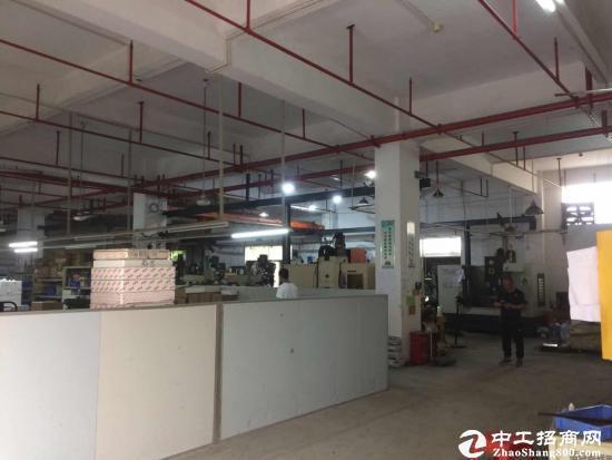 (原房东坪山沙湖新出1-2楼厂房 带豪华装修出租