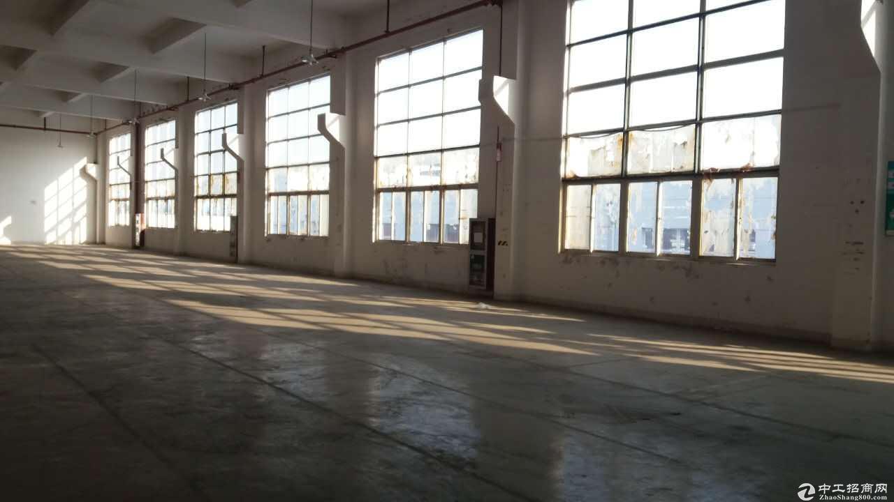 园区直招2000平厂房仓库办公,优质房源
