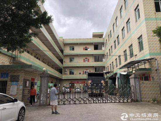 坪山石井金田路边标准厂房二楼800平方招租