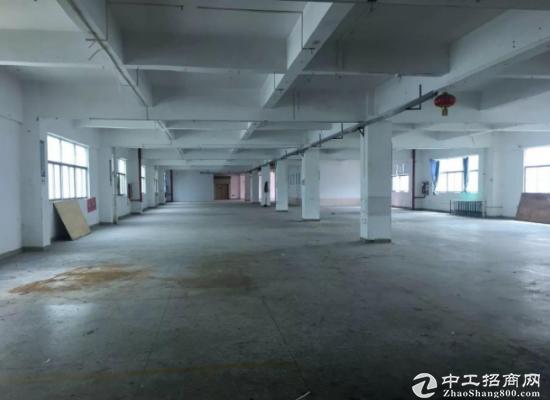 原房东!高埗洗沙独门独院1~3层3500平方厂房招租