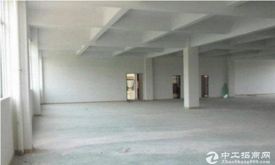 下村一楼1100平厂房,内部配套齐全,证书齐全
