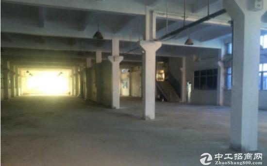 新创一楼1500平方带牛角厂房,可分租