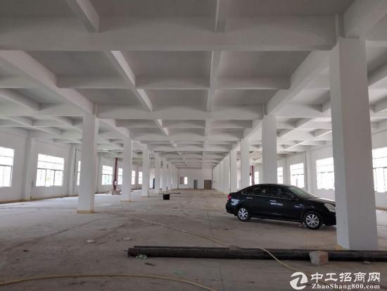 坪山荔景南路边上独院厂房二楼单层面积3000平方招租