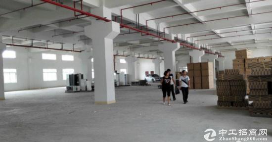 观澜龙观快线一楼厂房1900平方超大空地招租