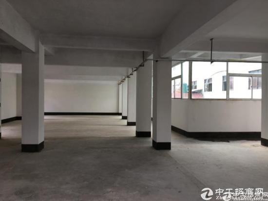 坪山碧岭原房东3楼整层350平米厂房出租