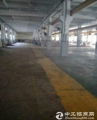 浪口村标准厂房一楼3000平方,高6.5米