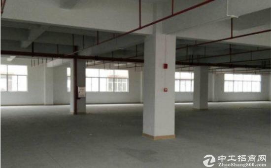 甲子塘1600平方标准厂房,带装修带双电梯