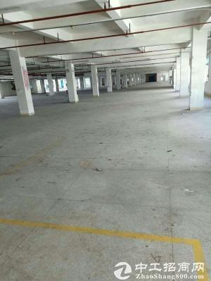 沙田镇新出标准厂房二楼1420平方低价出租