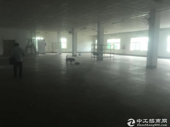 坪山新出一楼1050平米带装修厂房出租