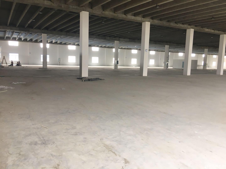 泽兴物流园区2号厂房2楼6000平方招租电商 物流中转 仓储 轻工业加工-图3