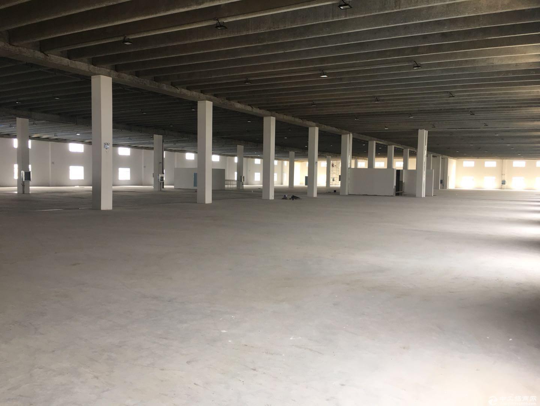 泽兴物流园区2号厂房2楼6000平方招租电商 物流中转 仓储 轻工业加工-图4