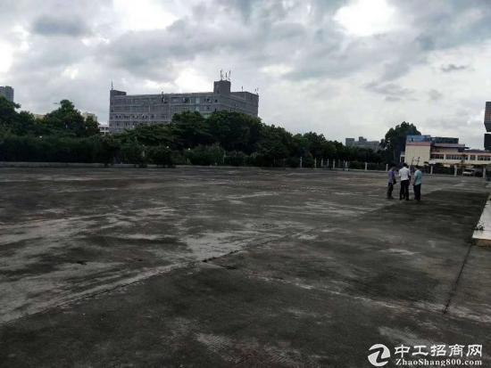 沙田镇西太隆村地皮33000平方低价出租