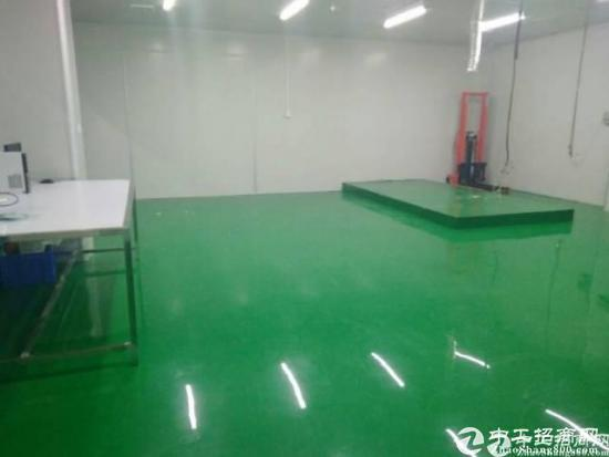 布吉秀峰工业区装修好800平厂房办公室