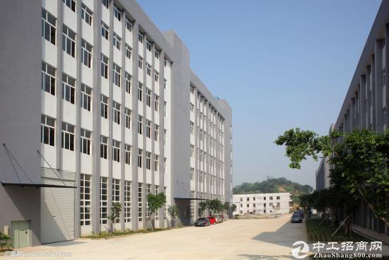 廖夏村新出一楼6.5米高 单一层1300平招租 价格合理