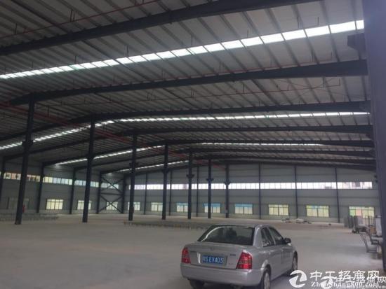 沙田镇新出独门独院单一层钢构,厂房2300平方