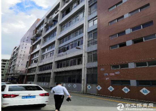 (出租) 沙井107国道边上黄浦四楼带装修厂房1300平招租