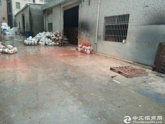 惠州秋长标准钢构厂房800平方,滴水6.5米