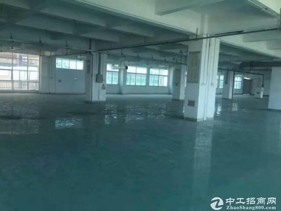 平湖新出独门独院7200平方米带装修厂房招租