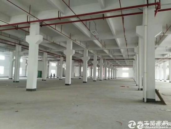 清溪 镇松岗村标准一楼1000平米,水电齐全