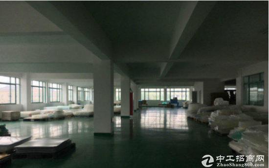 圳美楼上1800方标准厂房带地坪漆有电梯