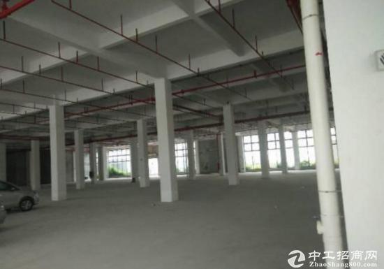 坪山主干道边红本商业楼招租4S店客户3000平米