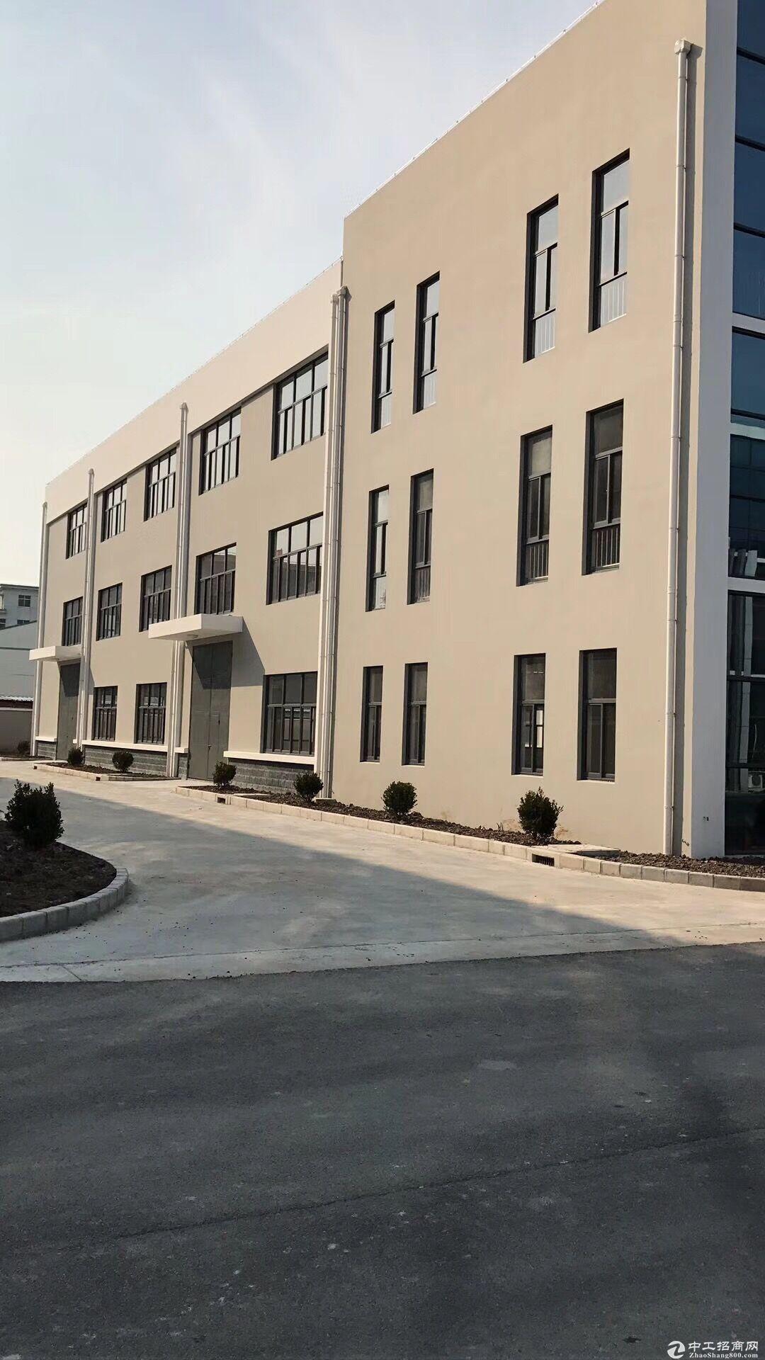 金山独立50年绿证,新建独栋厂房出售