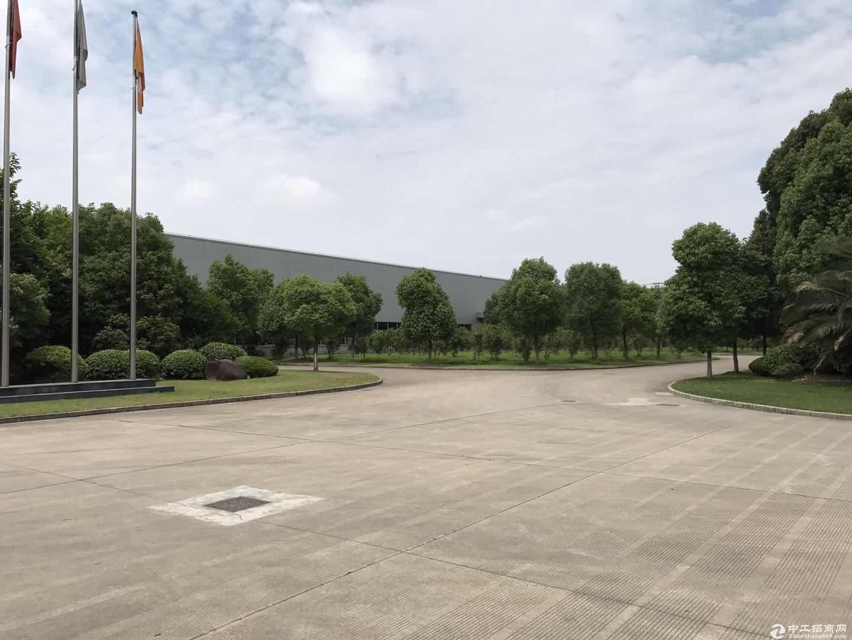车墩全单层973平米厂房104板块