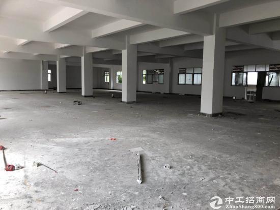 横岗沙荷路边上新出二楼整层1200平方厂房出租