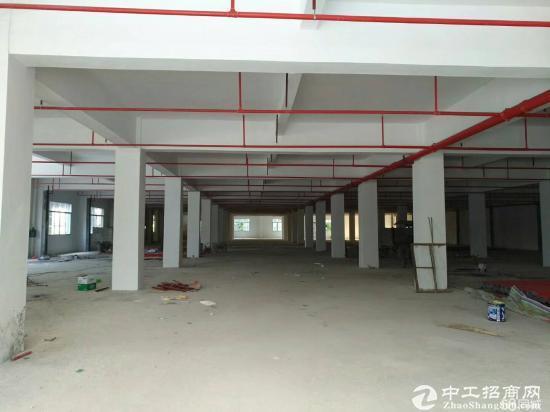 惠州惠阳大亚湾新出原房东3200平新建标准厂房低价出租