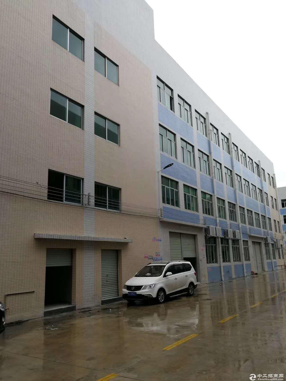 鹤山共和出售30亩国有土地 临近大路 已建有1万方厂房 售2600万