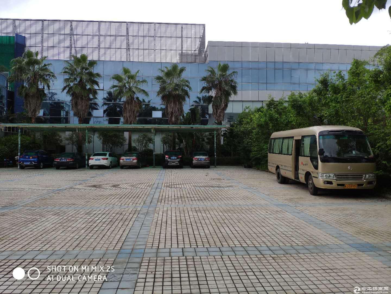 鹤山共和大型园区招商 共48000方可分租 配套成熟