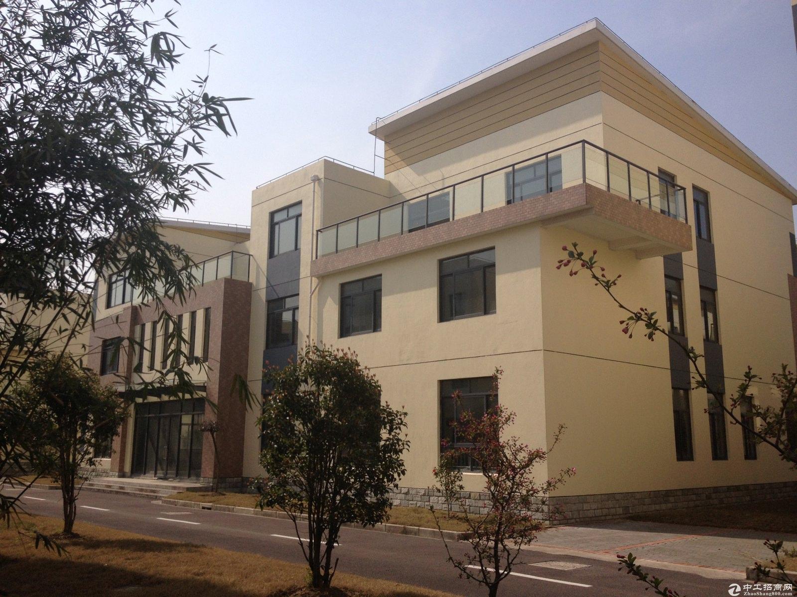 大众汽车厂旁1254平米精装独栋办公总部7米高售