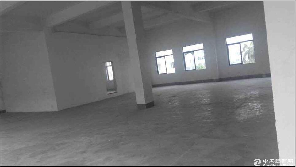杜阮650平方米厂房出租