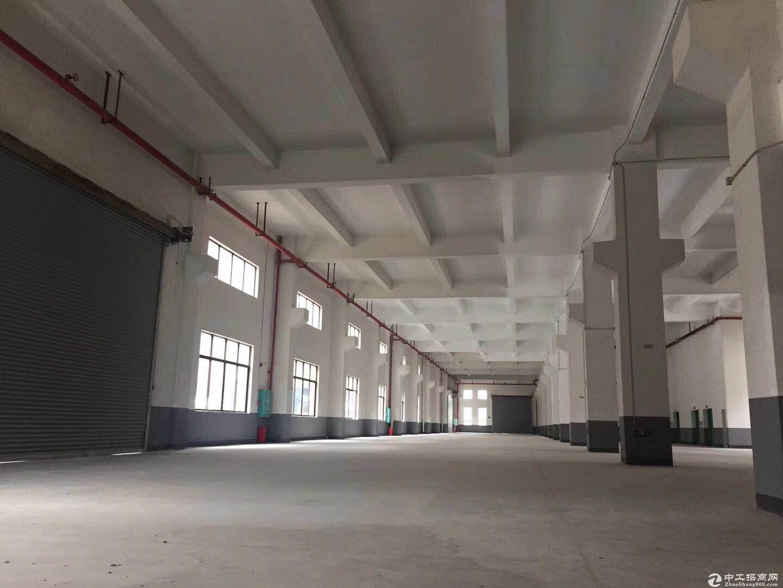 均安世友工业区16800厂房招租-图3