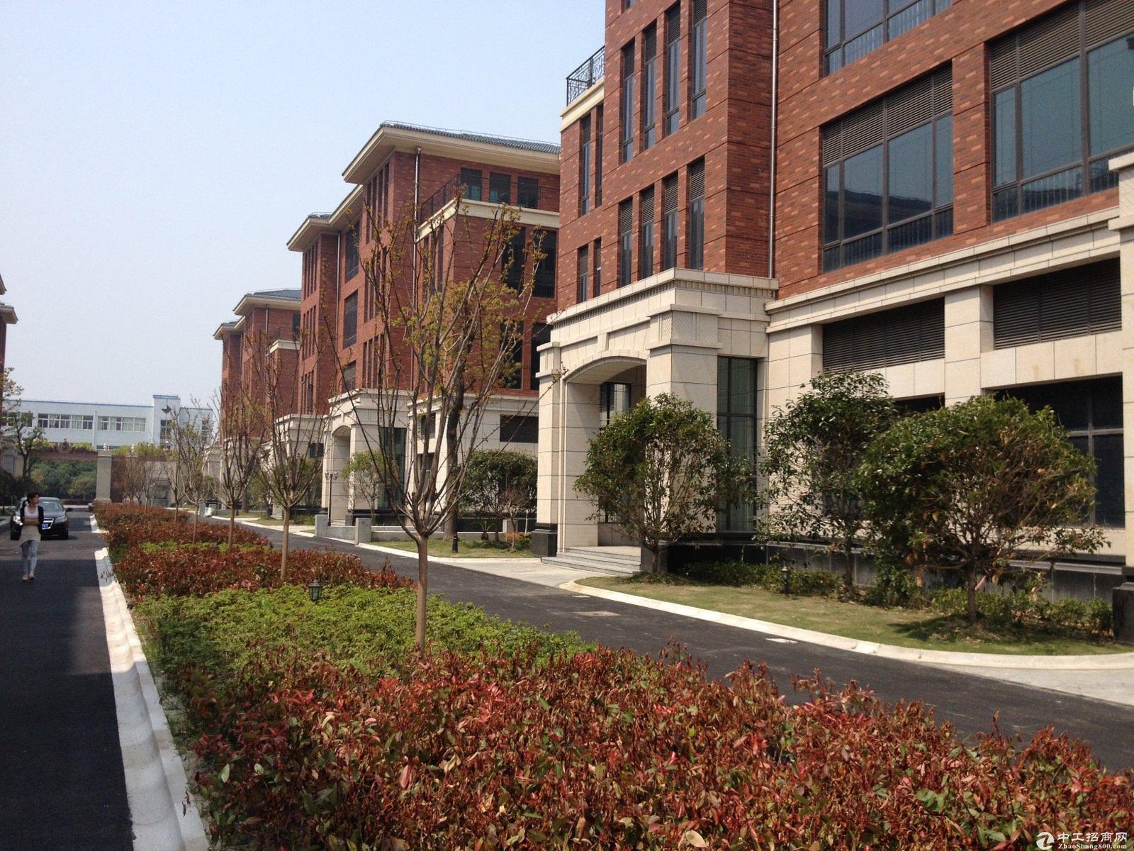 罗泾镇 潘泾路 双拼两层 可研发办公 厂房出售厂房