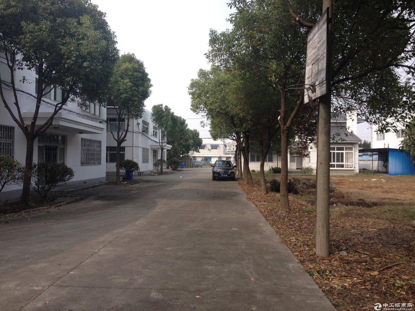 松江工业区独院绿证104板块全单层厂房诚售