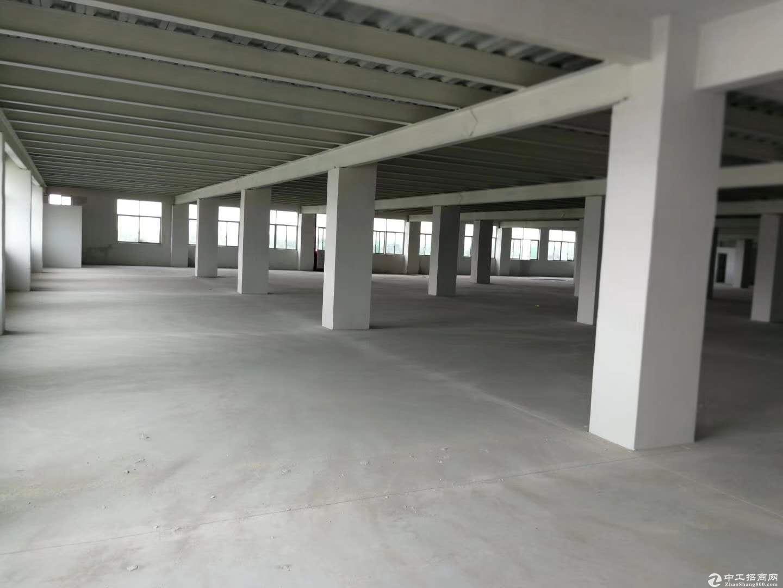 (原房东)高新区标准厂房6800方火爆招商 园区兴趣好-图2