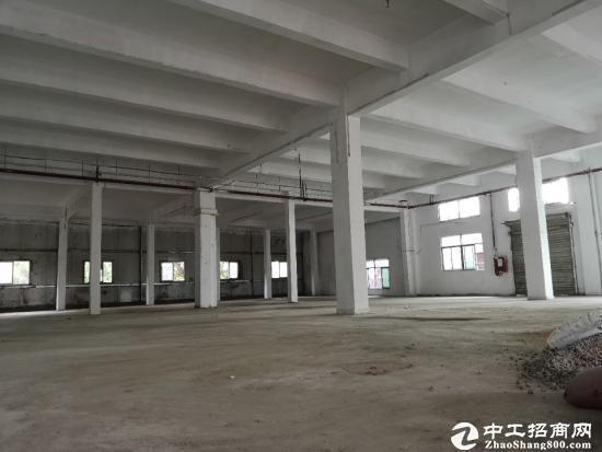 横岗大康一楼剩余1150平米,层高4.2米低价出租