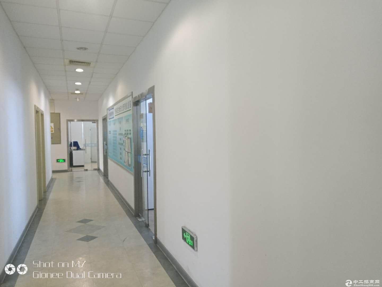 真!张江可办小环评的化学实验室1600平米出租