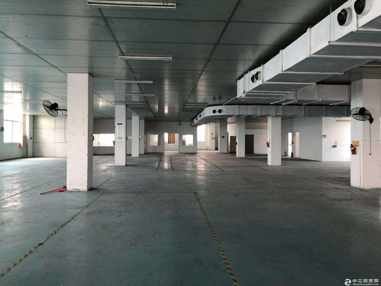 蓬江区荷塘厂房招商 独院形象好 带装修可立即办公