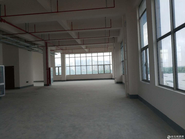 张江医疗器械园2000平米独栋2.9元