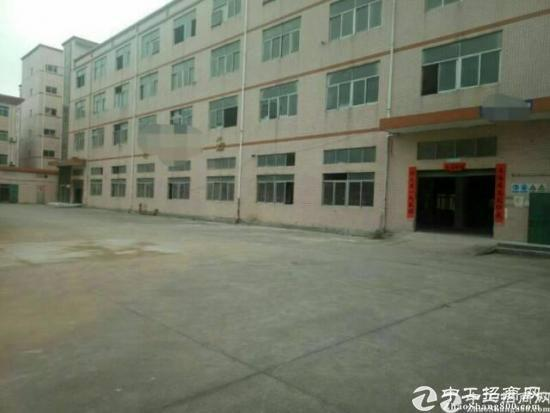 (出租)龙岗新出独门独院标准厂房4000平带电梯