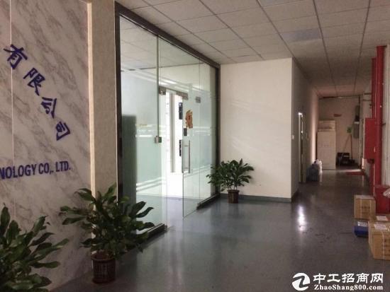 坪地原房东三楼1600平方招租,带地坪漆,双开门电梯