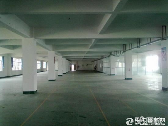 四联标准厂房楼上1200平厂房出租,形象好可分租