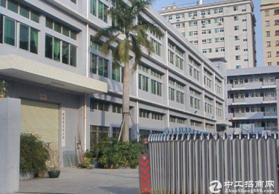 坪山 高铁站附近 3层4500平原房东 一楼5.6米