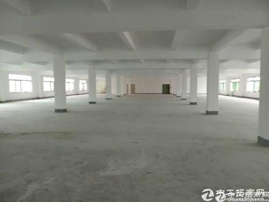 坪山区石井太阳村新出独院5420平厂房招租