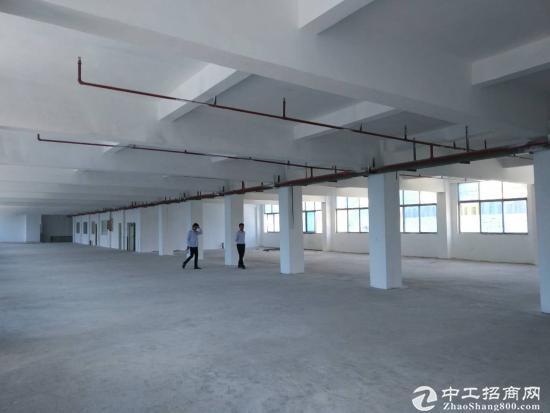 深圳龙岗高速出口同乐新出原房东一楼1200平急租