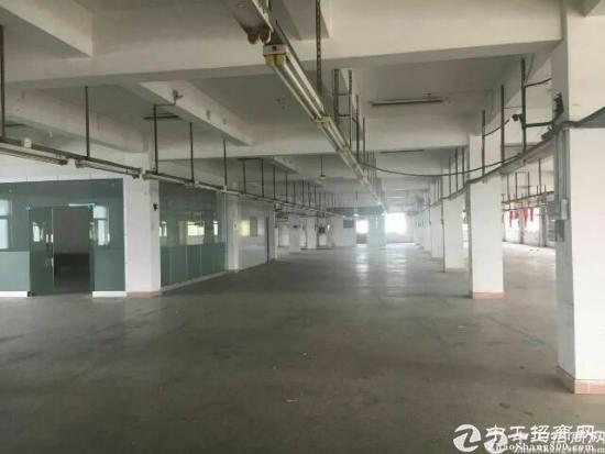 横岗保安社区 二楼厂房一千三百平方出租园区空地大