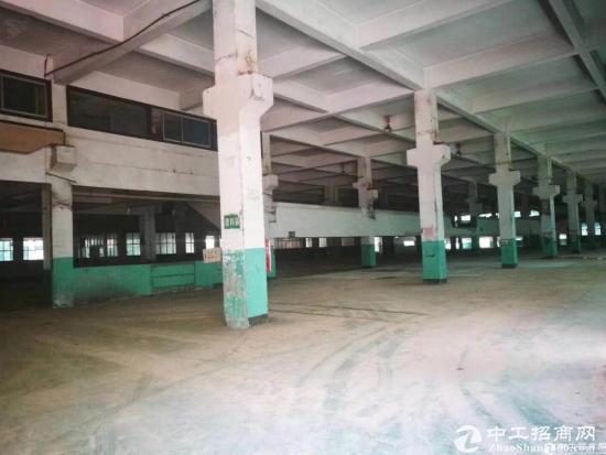 深圳北20000平物流仓库出租,大小可分