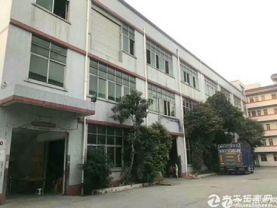街口新出精装修厂房靠近广深高速路口~480平方出租
